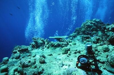 水中撮影も可能です